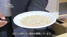 ソルガムきび:白インゲン豆を模したもの