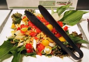 ソルガムきびとトマト、春野菜サラダ、トマトドレッシング
