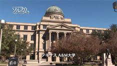 テキサスA&M大学