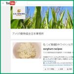 Youtube アメリカ穀物協会日本事務所チャンネル 《レシピ動画》ホワイトソルガムきび料理