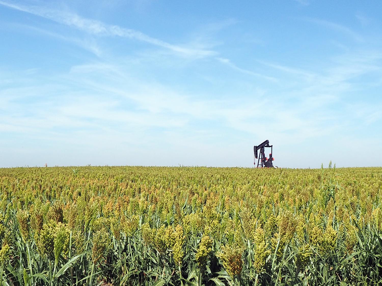 テキサス州・カンザス州の産地と加工会社について