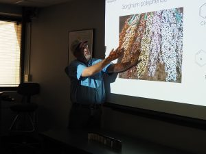ソルガムきびに関する最新の研究について(テキサスA&M大学)