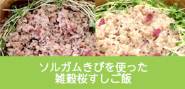 ソルガムきびを使った雑穀桜すしご飯